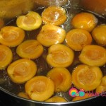 Gently add apricots to the mixture in an even layer.